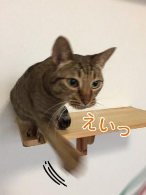 みさき84