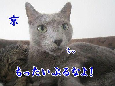 京 (6)