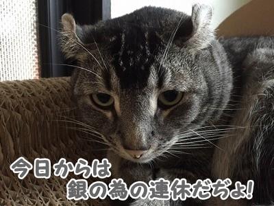銀 (86)