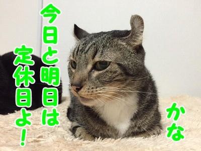 かな (76)