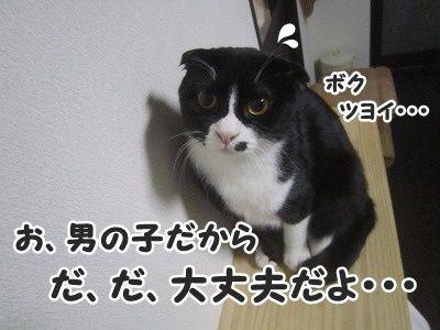 ふく (3)