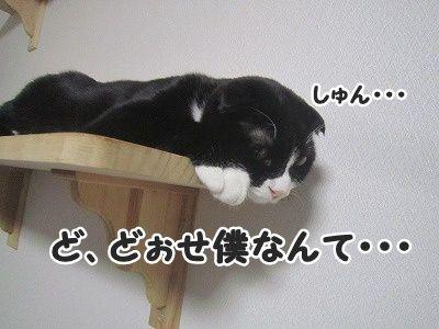 ふく (5)
