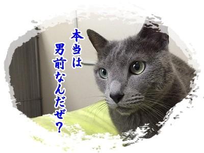 京 (64)