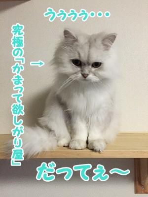 風 (45)