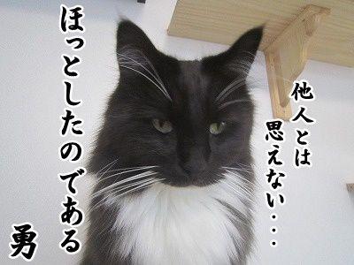 勇 (16)