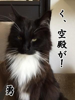 勇 (34)