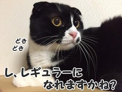 ふく (24)