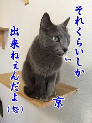 京 (47)