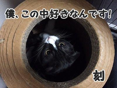 刻 (9)