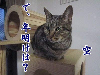 空 (7)