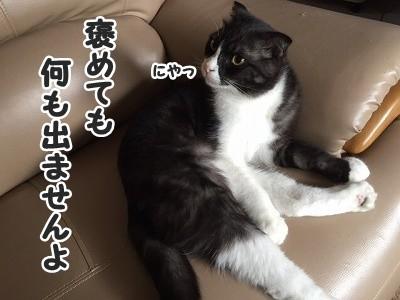 刻 (11)