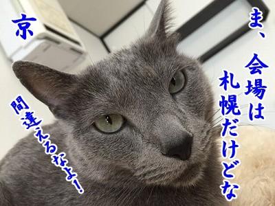 京 (52)