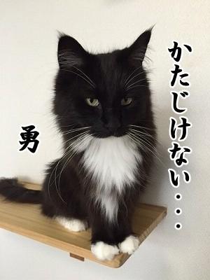 勇 (38)