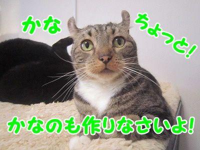 かな (4)