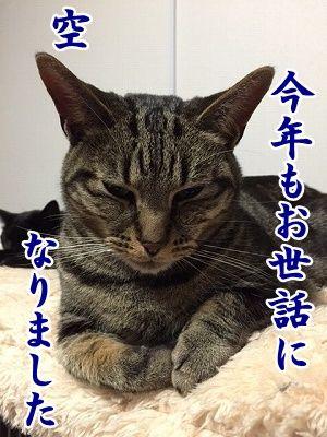 空 (8)