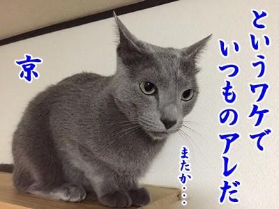 京 (70)