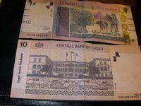 10スーダンポンド(SDG)紙幣