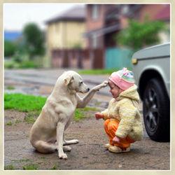 dog_and_girl_top