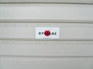 P1070262