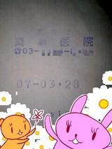 da821e43.jpg