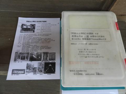 DSCN5746