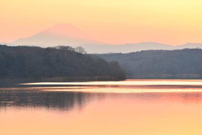 狭山湖 ニコンD610_041