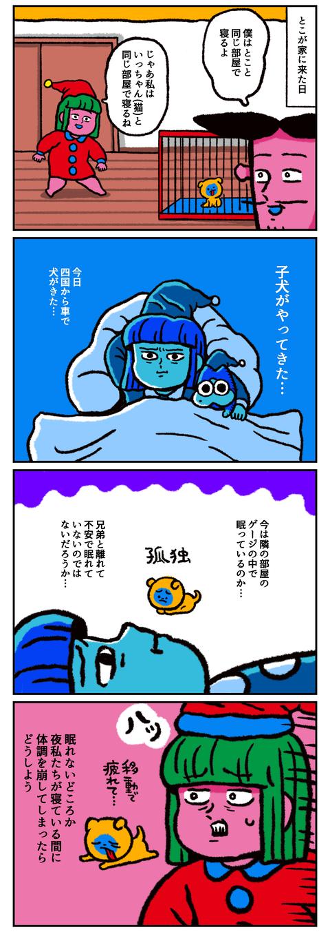 夜が不安1