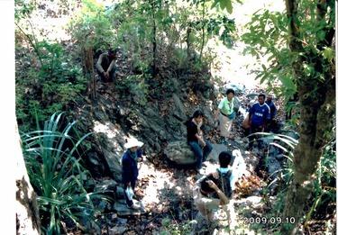 2009年の植林地水源近くの石20151112
