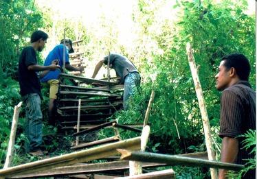 2010年の苗木柵の保護方法20151112