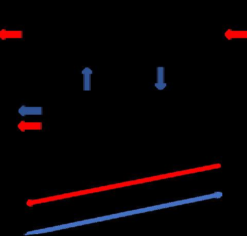 ダイアライザ内での溶質濃度分布