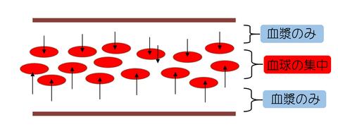 層流時の血球分布図