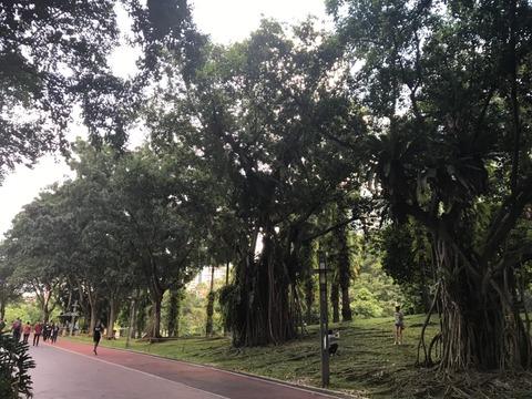 台湾&クアラルンプール 2019年ゴールデンウィーク_190605_0571