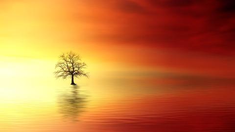 sunset-3156440_960_720