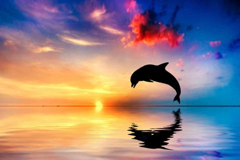 bigstock-Beautiful-calm-ocean-at-sunset-43459639-e1378924135306