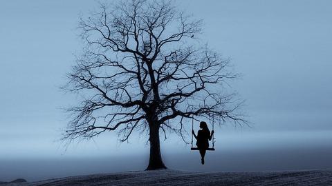 tree-3080406_960_720