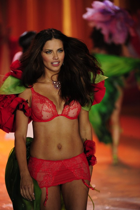Victoria's Secret Fashion Show 2012 002