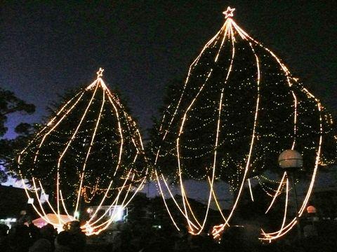 20101204甲子園会館ライトアップ (9)