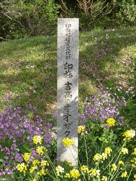 yoshitaka05