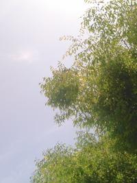 KIMG0134
