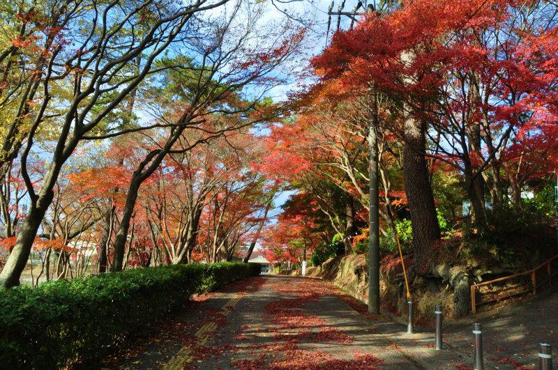 愛知県の名所 : 令和の風景