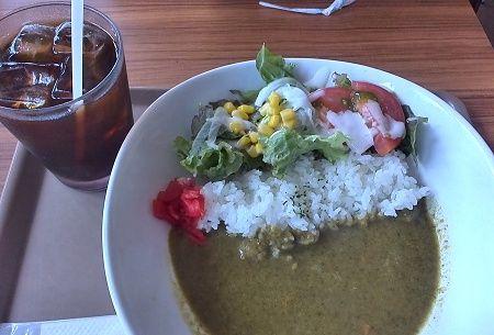 Cafe Hoshi-Meguri 初夏のグリーンカレー