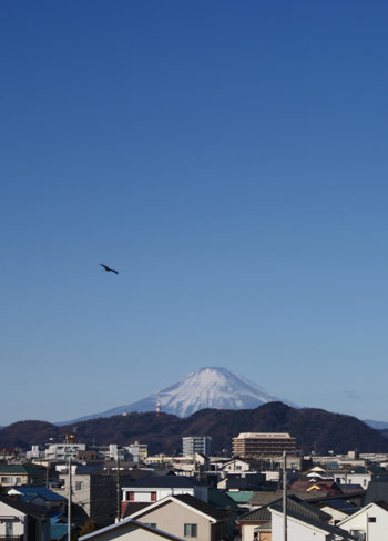 2018-01-03_8kufuji