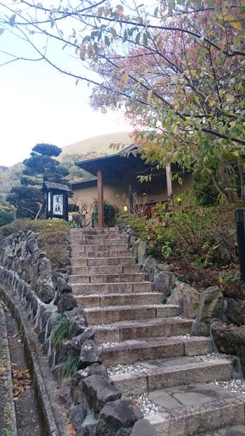 2015yoshizumi01.jpg