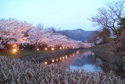 松本城桜03