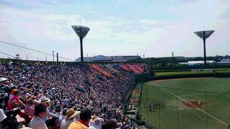 2015kokoyakyu01.jpg