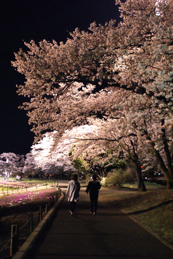 2016-04-09_nagamine01