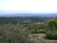 サントリー登美の丘ワイナリー景色