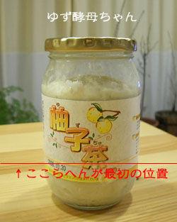柚子の元種20080213