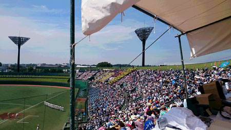 2015kokoyakyu02.jpg