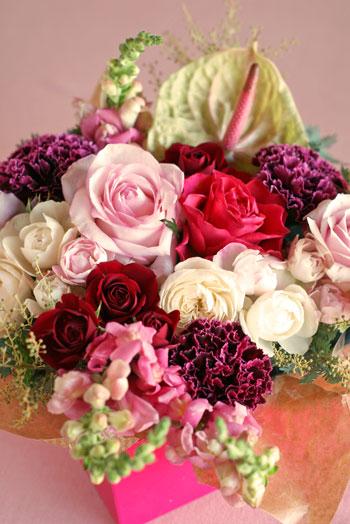 flower_201411181955246d6.jpg